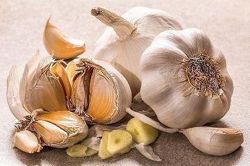 Полезные свойства чеснока. Чеснок, лимон и мед против старения человека