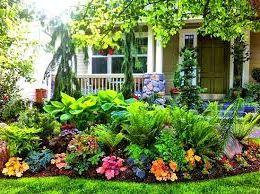 Креативные идеи для озеленения дома